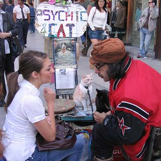 psychicCat